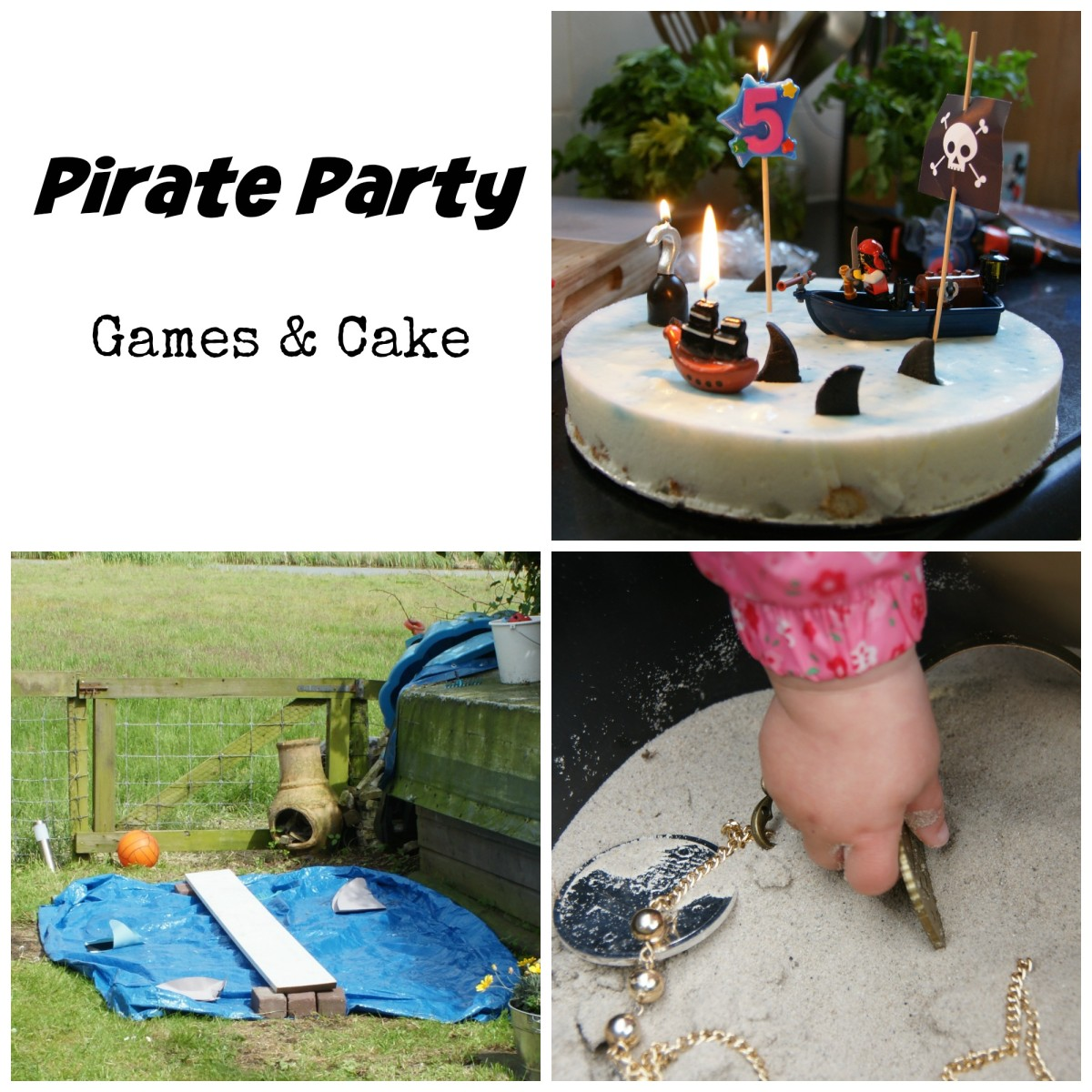 Pirate_Party