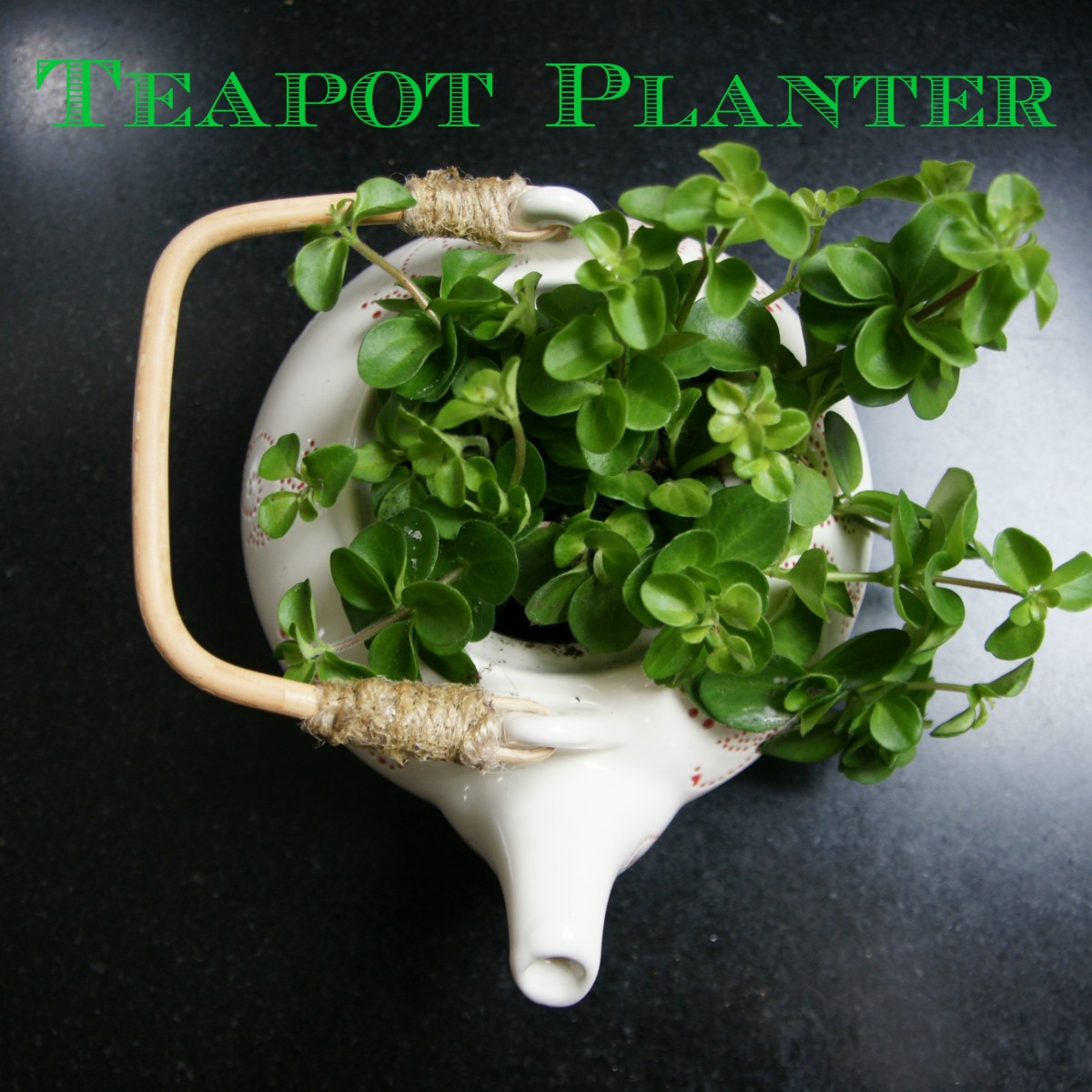 Teapot Planters: Teapot Planter: Just My Cup Of Tea